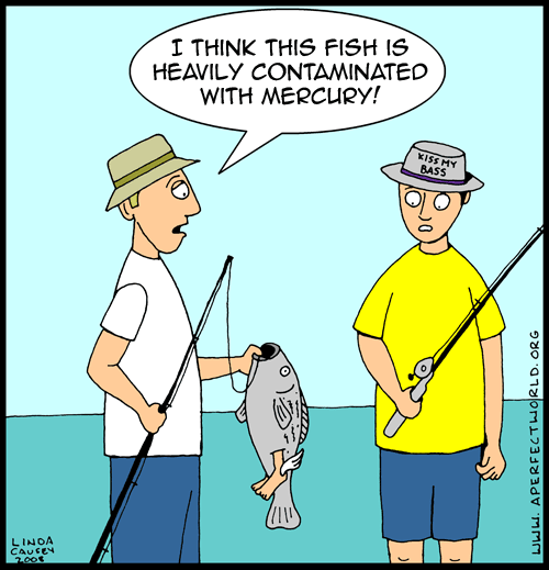 Toxic thursdays mercury in fish naturallyhealthyandgorgeous for Why do fish have mercury